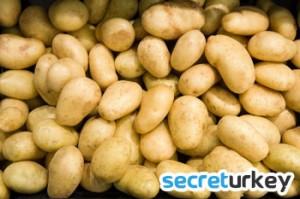 Bolu Patates
