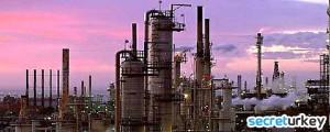 Petrokimya ve Otomotiv Sanayi