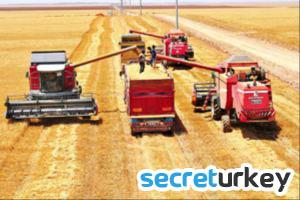 Ceylanpınar Üretme Çiftliği