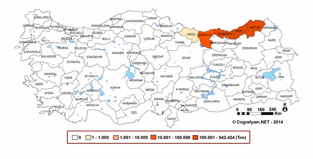 turk-kulturunde-cay-3