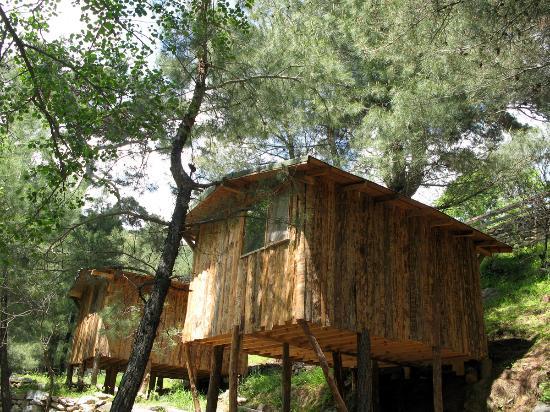 turkiye-de-kamp-alanlari-2